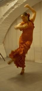 verhaaldiner flamenco door Karin Elich
