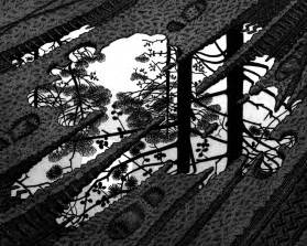 Escher Puddle - regenplas